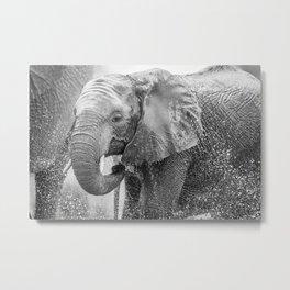 Shower time Metal Print