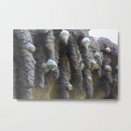 Chalk sketch of shells on stalactites Metal Print