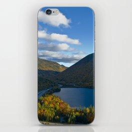 Artist's Bluff iPhone Skin