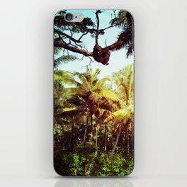 Sunlit Palm iPhone Skin
