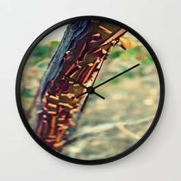 Shedding Skin Wall Clock