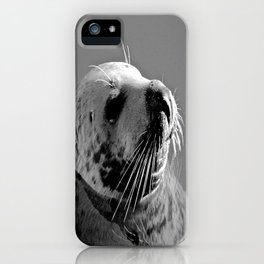 Howth Harbour Seal iPhone Case