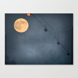 Wide Awake Canvas Print