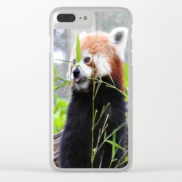 Red Panda Clear iPhone Case