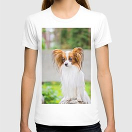 Portrait of a papillon purebreed dog with grass behind T-shirt
