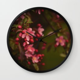 Graceful Spring Wall Clock