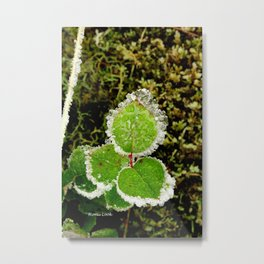 Frosted Life Metal Print