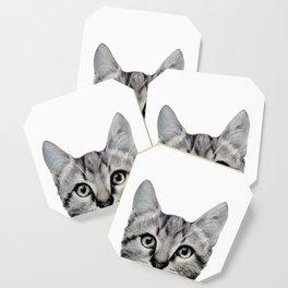 Cat, American Short hair, illustration original painting print Coaster