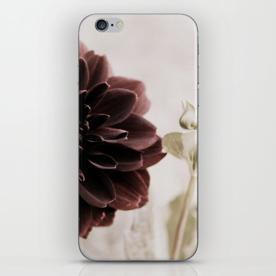 Dahlia - solitaire 122 iPhone & iPod Skin
