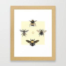 Bees on bees Framed Art Print