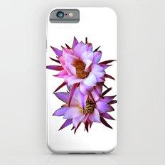 Purple cactus blossom iPhone 6s Slim Case