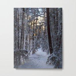 Winter Hikes around Jasper National Park, Canadian Rockies Metal Print