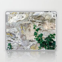 Follow Your Intuition Photography Laptop & iPad Skin