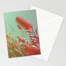 Red Fluffy Plant Stationery Cards