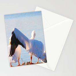 Pelican Wooing I Stationery Cards