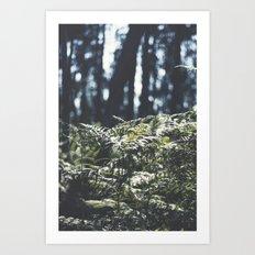 where the trees still whisper Art Print
