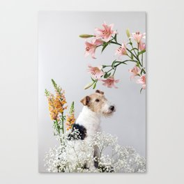 My baby sent me flowers Canvas Print