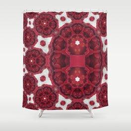 In Between Rose Mandala 1 Shower Curtain