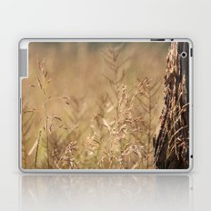 Summer Grass and Tree Laptop & iPad Skin