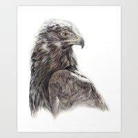 Golden Eagle Rescue Art Print