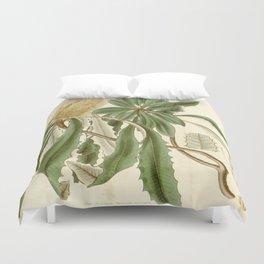 Banksia integrifolia (Coast Banksia) 1827 Duvet Cover