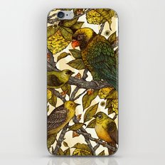 Citrine iPhone Skin