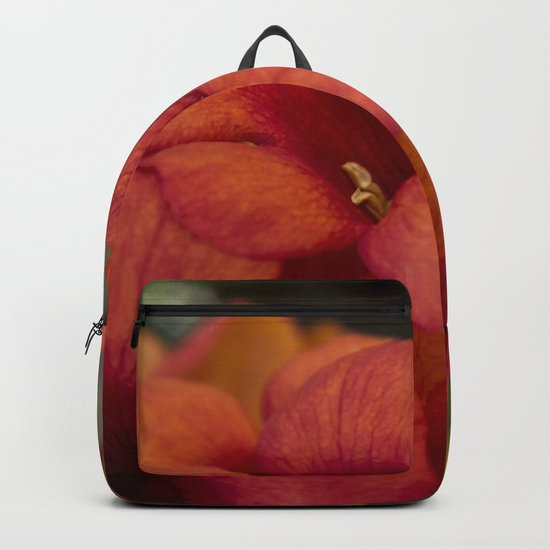 Bignonia Flowers. Photography . Backpack