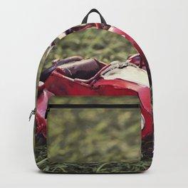 Metal sidecar Backpack