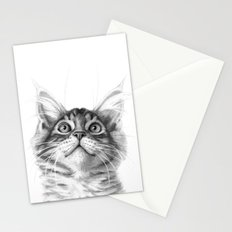 Kitten looking up G115 Stationery Cards