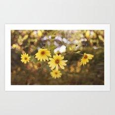 Five Flowers Art Print