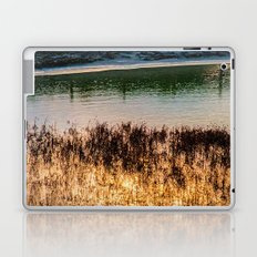 POND LIGHT Laptop & iPad Skin