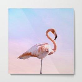 Flamingo and Unicorn Sky | Flamingo Photography | Ocean | Beach | Travel | Tropical | Landscape Metal Print