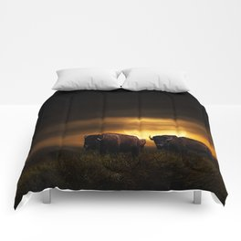 Two American Buffalo Bison with Moon Rise Comforters