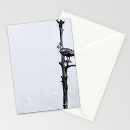 Lonely Perch Stationery Cards