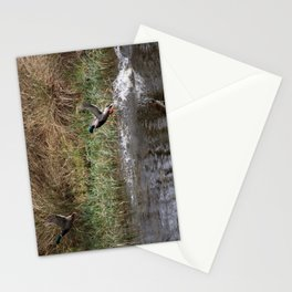 Ducks: Their Off! Stationery Cards