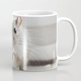 Gerbil eating Coffee Mug