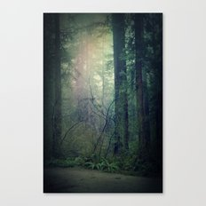 Beckoning Canvas Print