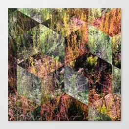 Super Natural No.2 Canvas Print