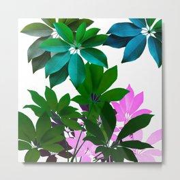 Plant, Leaf Composition Metal Print