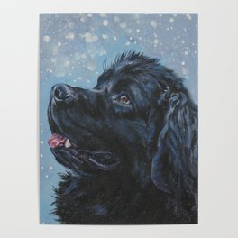 Newfoundland Dog Art Portrait from an original painting by L.A.Shepard Poster