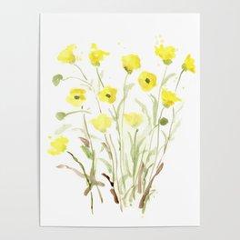 Pretty, Delicate, Happy, Yellow Buttercups Poster