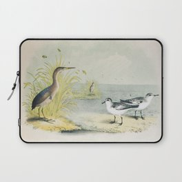 PLATE XL The Least Bittern The Sanderling, or Ruddy Plover Ornithology Birds Vintage Studies America Laptop Sleeve
