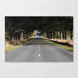 long drive Canvas Print