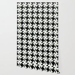 Katze Wallpaper