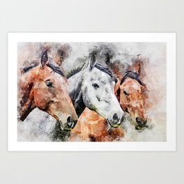 Horses Horse Head Animals Art Print
