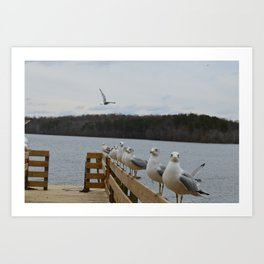 Seagulls on the Pier Art Print