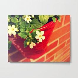 Red vase white petals Metal Print