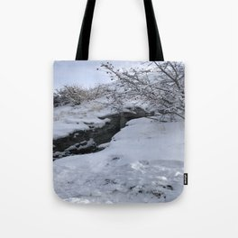 Homestead Crater Tote Bag