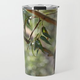 Kookaburra sitting in a gum tree Travel Mug