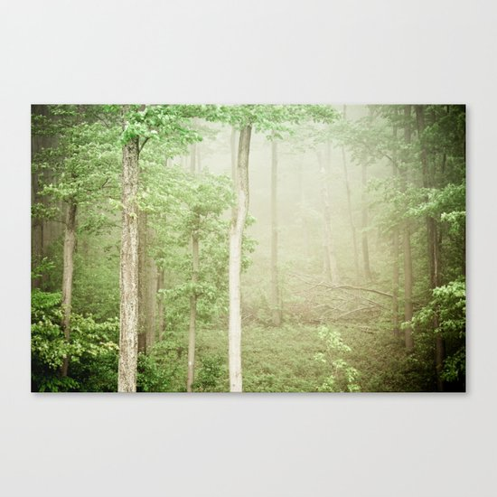 The Beauty of Ordinary Things Canvas Print